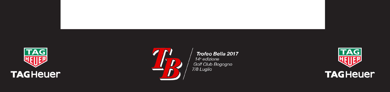 210x50_off_sponsorin_TB_2